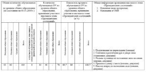 Отчет о проведении школьного этапа Всероссийских спортивных соревнований школьников «Президентские состязания»
