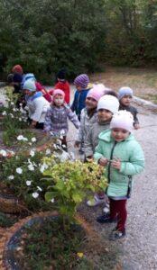Осенняя прогулка в СП «Детский сад» ГБОУ ООШ пос.Сборный